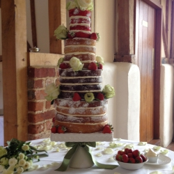 Extra tall Naked cake with cream roses (1)