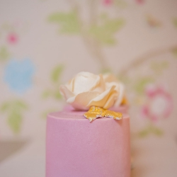 cake-mini