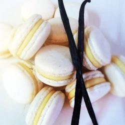 Vanilla-and-Milk-choc