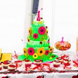 Lady Bird Cake Spread