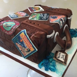 Suitcase Cake Grand Canyon