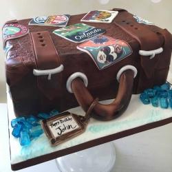 Suitcase Cake Orlando
