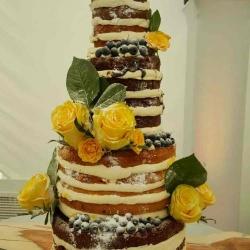 Naked Orange Cake