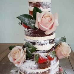 Naked Tower Cake